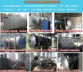 河北石家庄高浓度大型臭氧发生器制造厂家