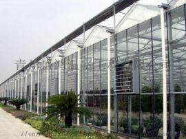 河北邢台智能玻璃温室建设管理