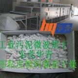 工业污泥微波烘干机技术厂家 污水污泥快速处理 高粘度污泥烘干机