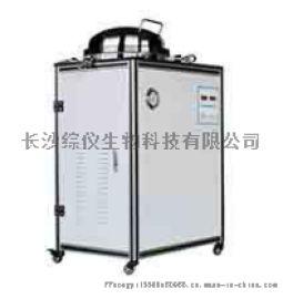 全自动立式高压灭菌器