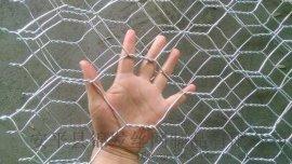石笼网在生态治理中的应用