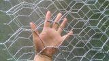 石籠網在生態治理中的應用