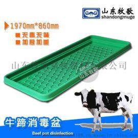 兽用足浴盆 牧场牛蹄消毒盆 牛用消毒设备