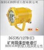 矿用隔爆型巷道灯DGS35/127B(C)正辉照明厂家型号