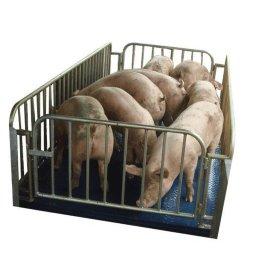 淮安和信牧畜秤 动物秤 动物地磅3t围栏秤电子地磅