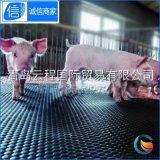 橡胶猪舍垫 母猪栏专用橡胶垫 小猪猪舍保育垫