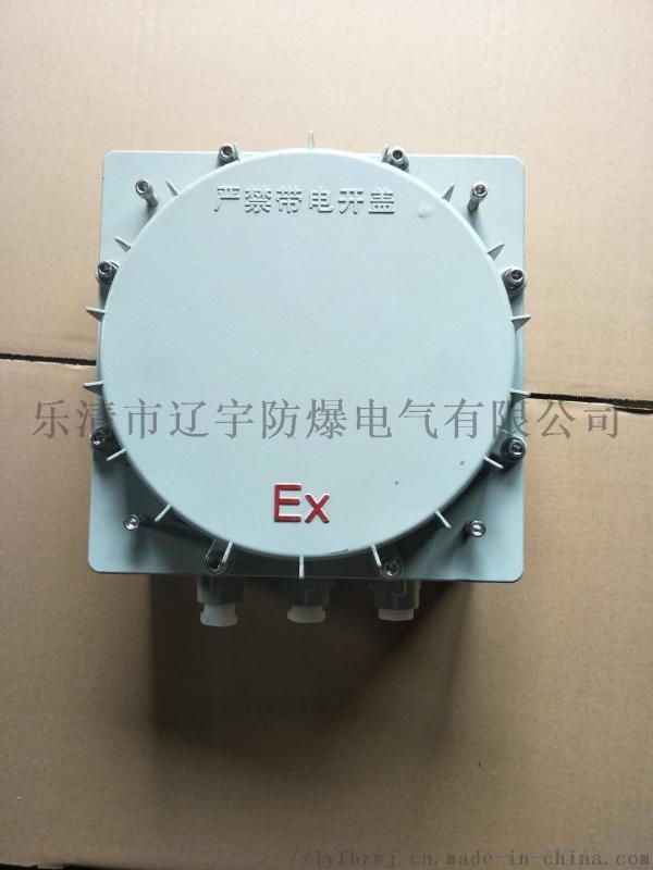 防爆控制箱BXKIIC级 厂家    非标加工