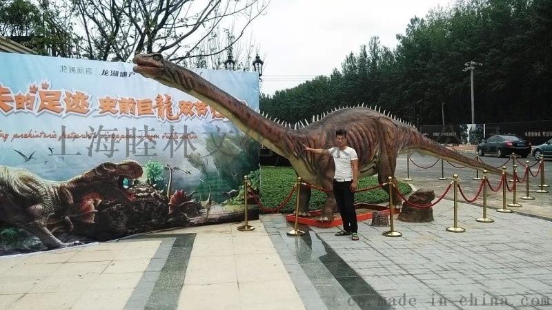 房地产活动恐龙展 恐龙租赁出租
