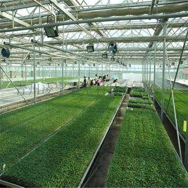 生态智能温室 温室定制 温室承建