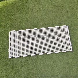 鸡鸭鹅塑料漏粪板 养殖塑料漏粪板