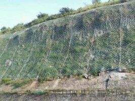 专业护坡防护拦石镀锌网厂家直销
