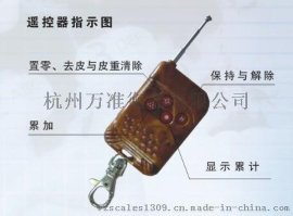 贵金属吊秤,铁壳吊秤,铁壳吊磅