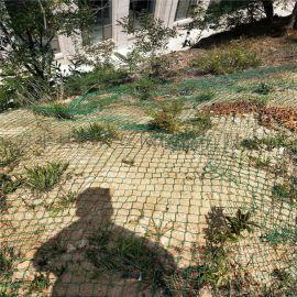 矿山边坡复绿.绿化喷播铁丝网.石场矿山边坡复绿网