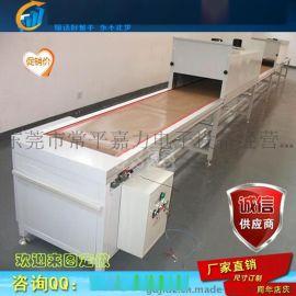 食品隧道炉 网带隧道炉 高温烘干线 喷油拉