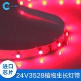 创想LED灯带植物生长灯带3528 24V裸板不防水植物光照灯60珠灯带