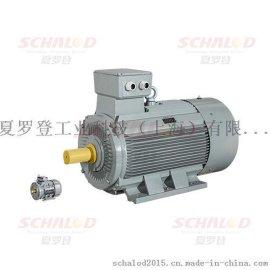 夏罗登优势进口AC Motoren转矩电机