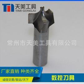 天美直销 订制钨钢成型刀 硬质合金成型铣刀 焊接刀具 非标刀具
