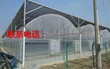 一畝地建造薄膜溫室大棚需要  多少錢 薄膜溫室大棚的價格