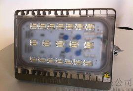 飛利浦LED泛光燈BVP161 30W廣告牌照明