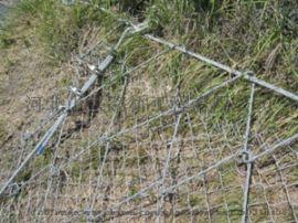 SNS型边坡防护网 穿山道路两侧山体加固