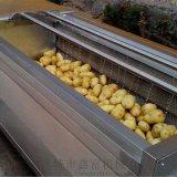土豆去皮清洗机,毛辊去皮清洗机