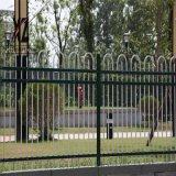 小院围墙护栏,农村小院锌钢围栏,铁栅栏隔离栅