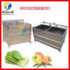 小型雙缸洗菜機 果蔬清洗機 辣椒豆芽清洗