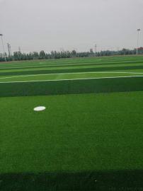 足球场人造草坪 人工草皮