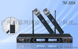 TMS天马士会议系统 TM-3004一拖二无线麦克风