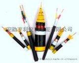 ia-DJYP2Y计算机电缆(中国联通)/德令哈电缆