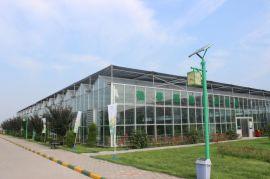 温室大棚造价 山东豪达瑞科HD-WJK智能连栋温室