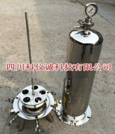 不锈钢耐酸碱滤芯过滤器 液体井水卫生级滤芯过滤器