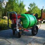 志成药箱式汽油高压喷雾器多功能洒水机