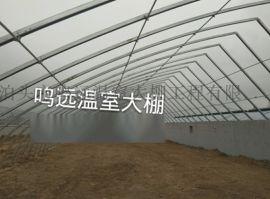 农业户们都在关注几字钢大棚骨架寿命问题