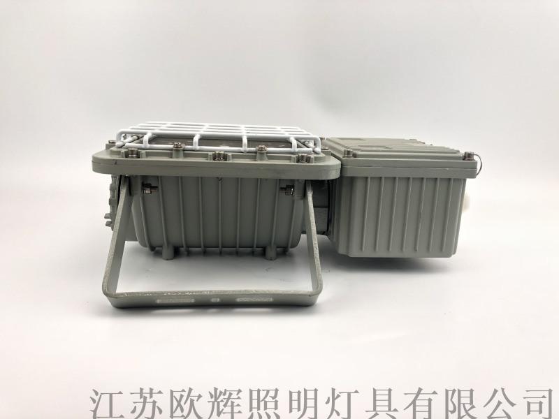 BTC6131一体式防爆泛光灯/BTC6131江苏利雄厂用防爆泛光灯BTC6131