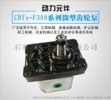 CBTS-F300系列齿轮泵 厂家直销 批发 现货 高压齿轮泵