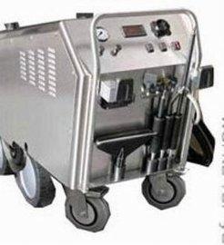 工业饱和蒸汽清洗机GV18 饱和蒸汽洗机厂家