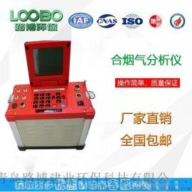 锅炉烟筒检测-LB-62系列综合烟气分析仪
