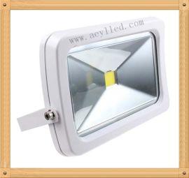 高品质户外景观照明,公园绿化照明,背景墙体投光照明**产品LED投光灯