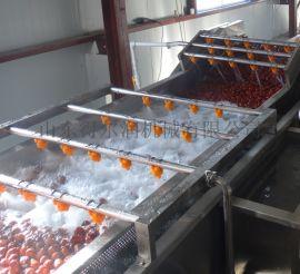 新疆 大枣烘干机 大枣清洗烘干生产线 大枣烘干设备