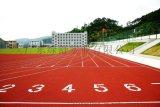 广州塑胶跑道,复合型塑胶跑道,塑胶跑道厂家