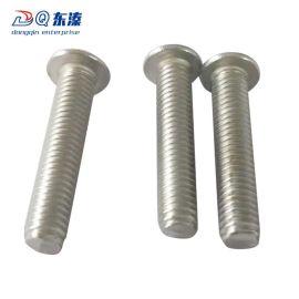 东溱厂家直销304不锈钢内六角平圆头螺丝 不锈钢螺钉定制批发