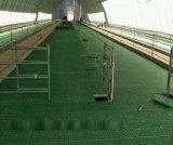 新型塑料羊用漏糞板 大型羊舍專用漏糞板