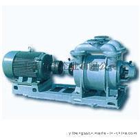 上海一泵SK系列水环式真空泵
