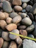 5-8釐米天然鵝卵石多少錢一噸