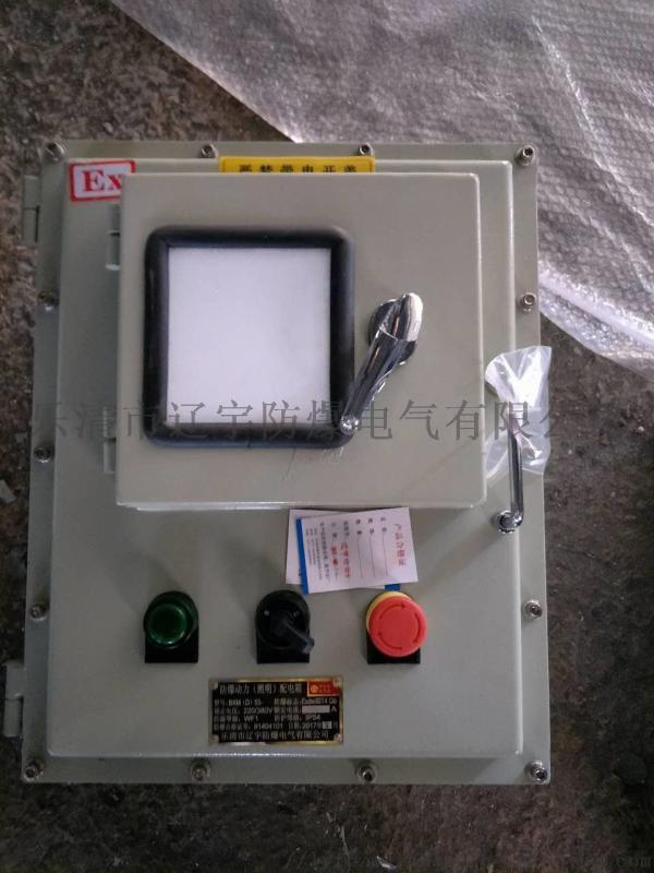 视窗式防爆配电箱 石油化工用电箱BXMD