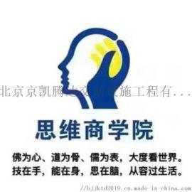 大脑银行商业思维 总裁利润突围