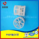 氯鹼項目鹼洗塔用PVDF鮑爾環聚偏氯乙烯鮑爾環填料