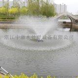 噴泉曝氣機 浮水式曝氣機 景觀曝氣機 造景曝氣機