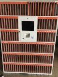 東晟直銷智慧共用書櫃 智慧換電櫃智慧櫃定製